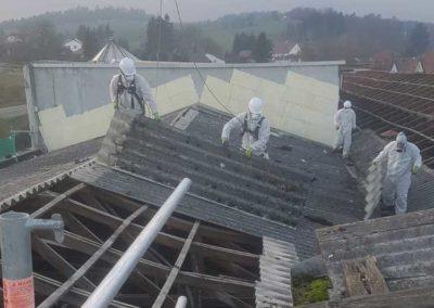 Demontage und Entsorgung von asbesthaltigen Dachplatten (Asbestdach) 2200m² - 12.2020