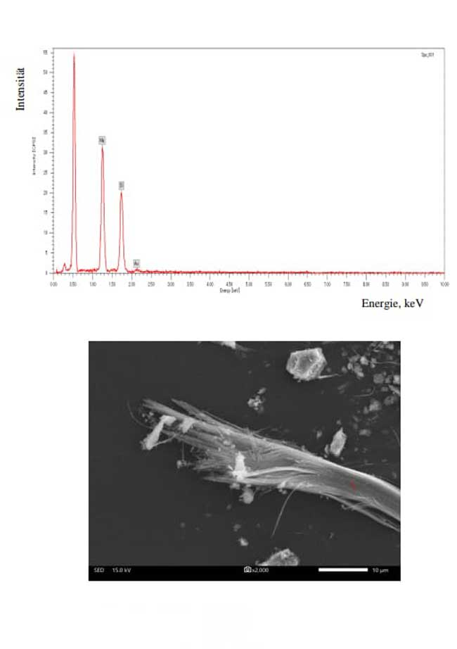 Asbest Analyse durch unser zertifiziertes Partnerlabor | AsbesTTech Darmstadt