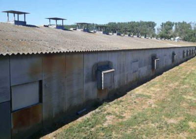 Sanierung von asbesthaltigen Dächern durch AsbesTTech Darmstadt